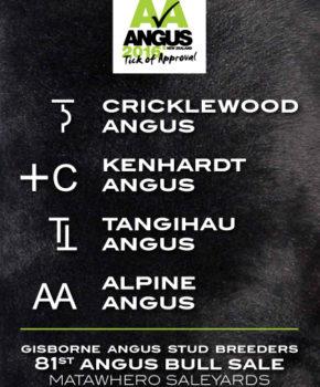 Gisborne Combined – 29 June 2016