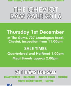 Cheviot - 1 December 2016