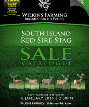 Wilkins Farming (N.I. Sale) – 18 January 2016