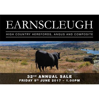 Earnslceugh Angus - 9 June 2017