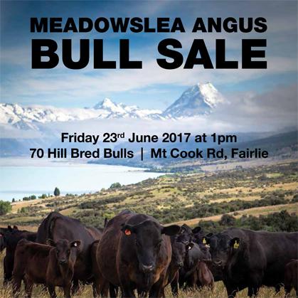 Meadowslea Angus - 23 June 2017