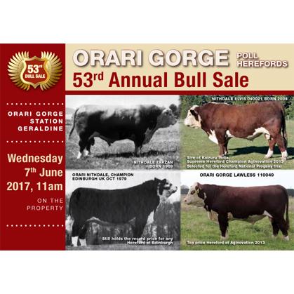 Orari Gorge Herefords - 7 June 2017