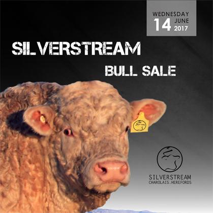 Silverstream - 14 June 2017