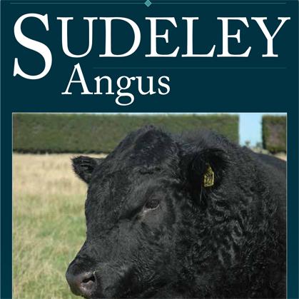 Sudeley Angus - 13 June 2017