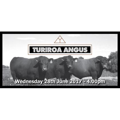 Turiroa Angus - 28 June 2017