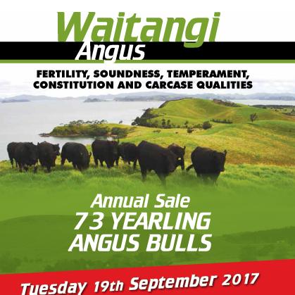 Waitangi Angus - 19 September 2017