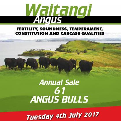 Waitangi Angus - 4 July 2017