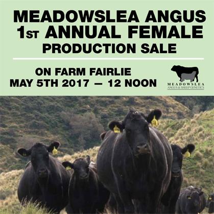 Meadowslea Angus - 5 May 2017